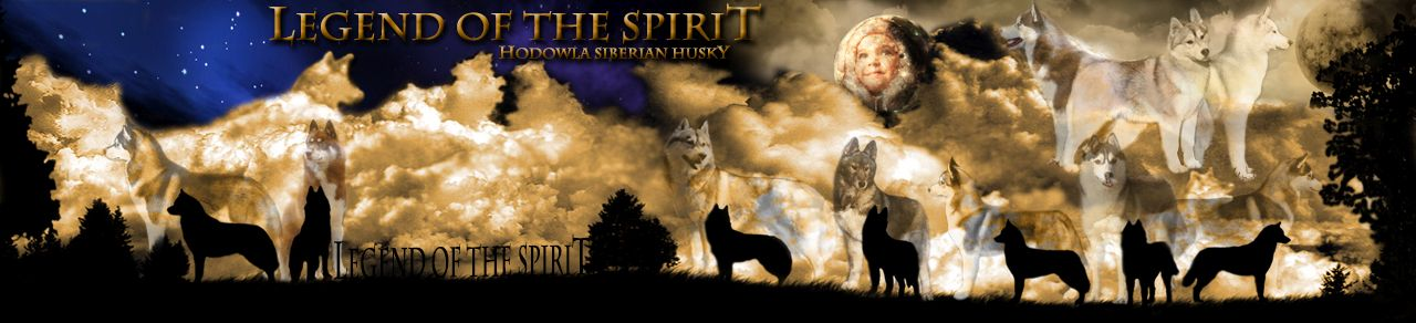Legend of the Spirit